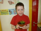 3rd Class - Runner Beans and Nijellas